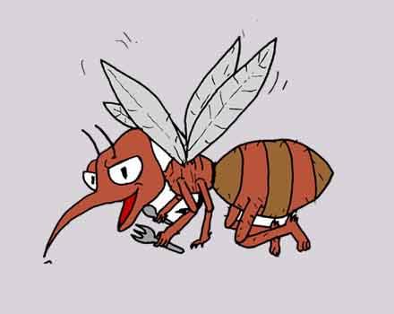 Animasi Nyamuk