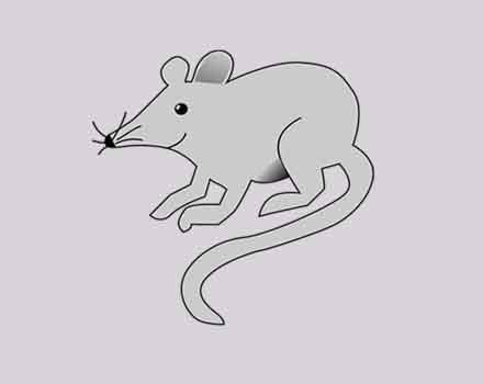 Animasi Tikus